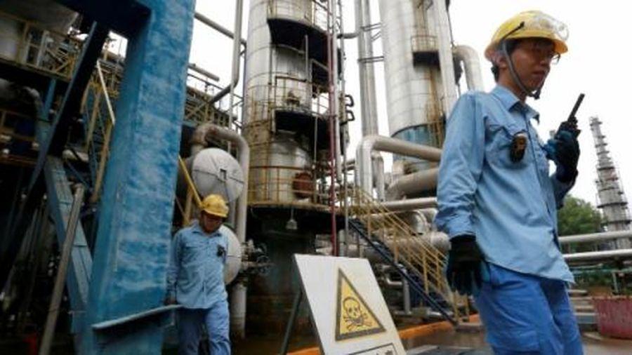 Trung Quốc tăng mạnh nhập khẩu ethanol từ Mỹ