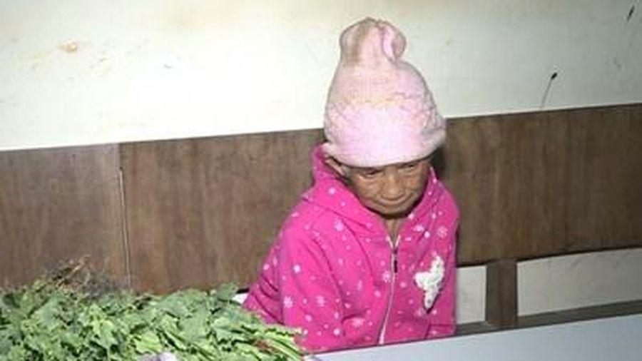 Sơn La: Phát hiện 200 cây thuốc phiện trồng trên nương