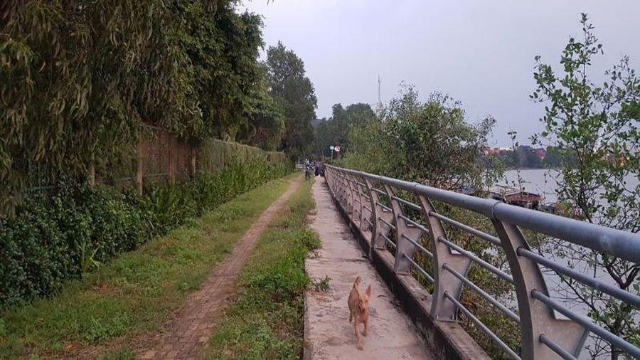Biến dòng kênh đen trở thành 'sông Seine của Sài Gòn'