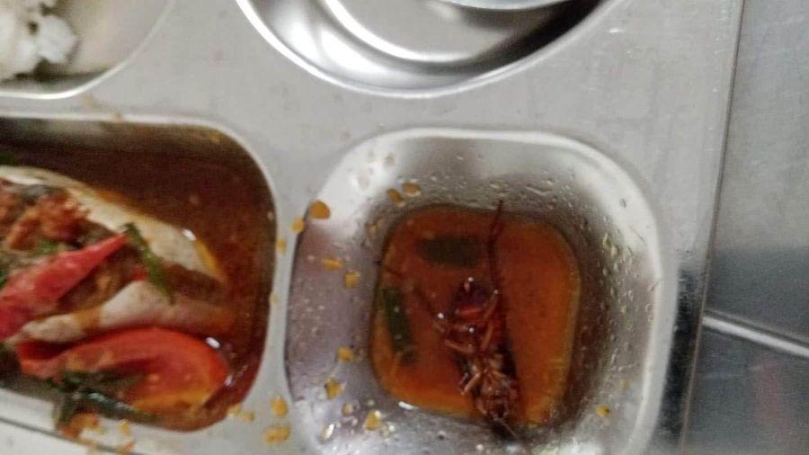 Vụ suất ăn học sinh cấp 3 Nguyễn Văn Linh có gián: Kiểm tra bếp ăn đạt yêu cầu