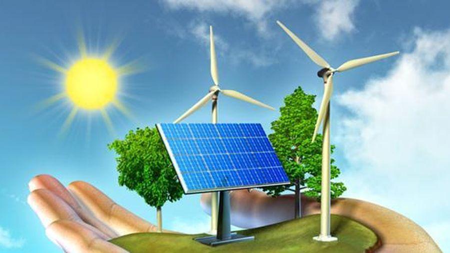 Tiềm năng điện sinh khối của Việt Nam