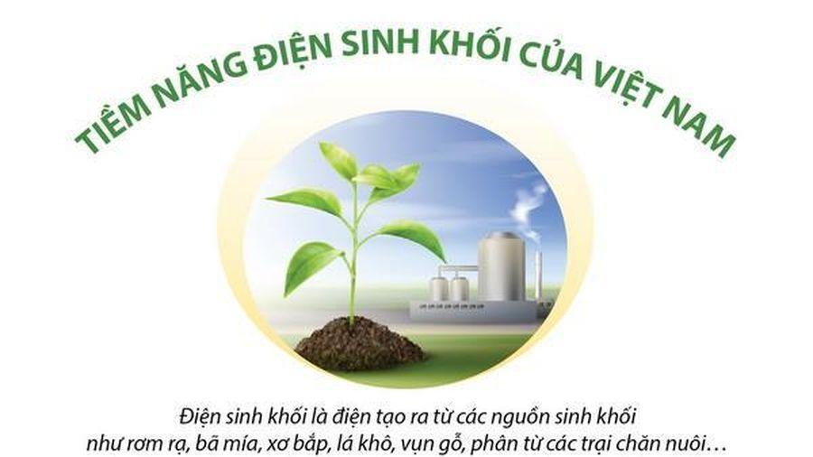 Tiềm năng nguồn điện sinh khối của Việt Nam