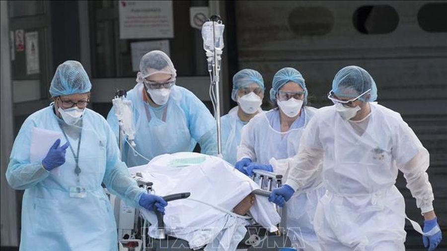WHO khẳng định đã báo động cao nhất về dịch COVID-19 từ đầu năm ngoái