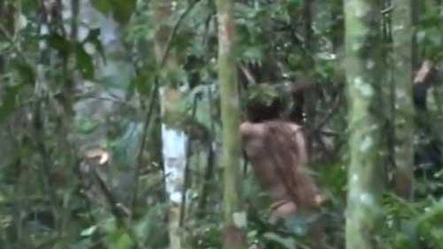 Hình ảnh hiếm hoi về người thổ dân đơn độc giữa rừng Amazon