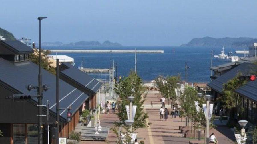 10 năm sau thảm họa sóng thần và cách Nhật Bản phục hồi 'vùng đất chết'