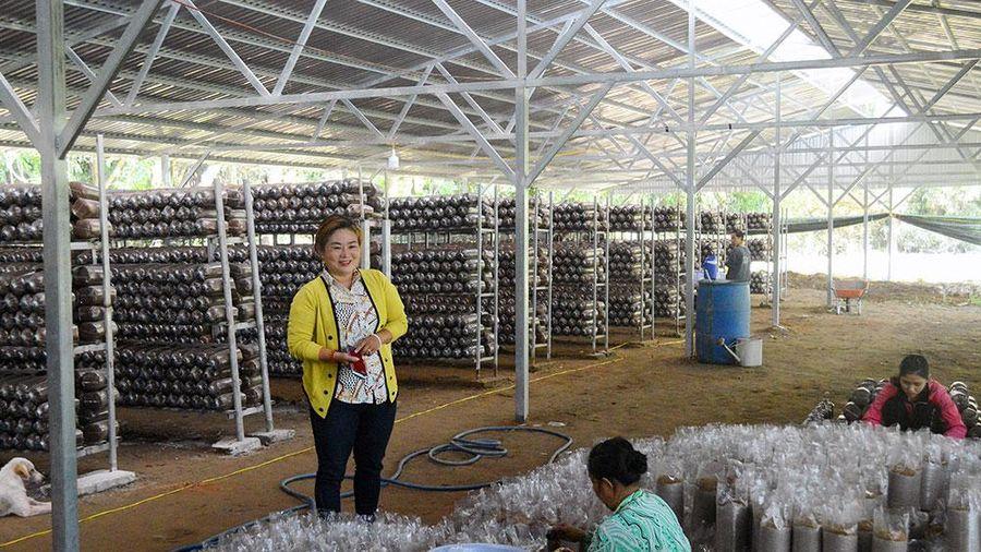 Khi phụ nữ là nông dân sản xuất - kinh doanh giỏi