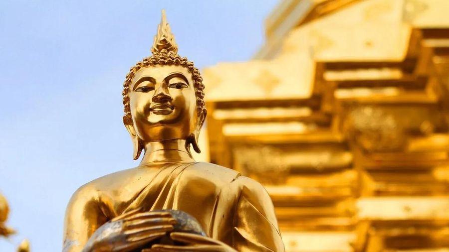 Đức Phật cần gì ở đại gia?