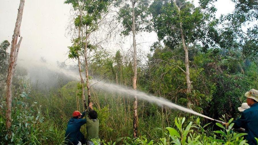 Rừng U Minh Hạ cảnh báo nguy cơ cháy cực kỳ nguy hiểm