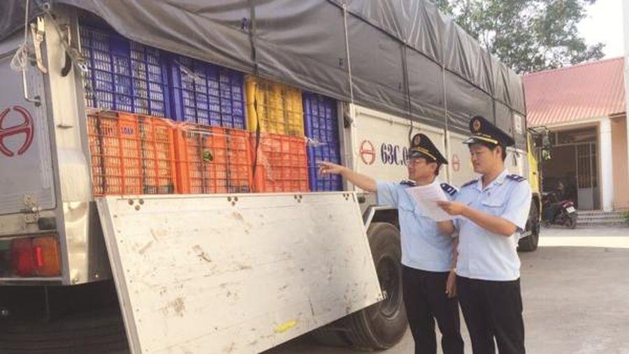 Đôn đốc thực hiện Thông tư 17 về phân loại phân tích hàng hóa xuất nhập khẩu