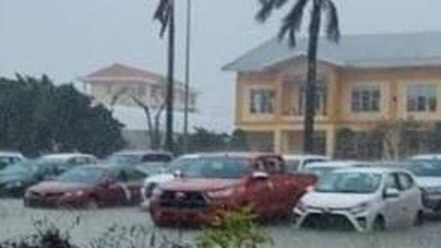 Xác minh vụ đại lý Toyota 'phơi khô', bán xe từng bị ngập lụt