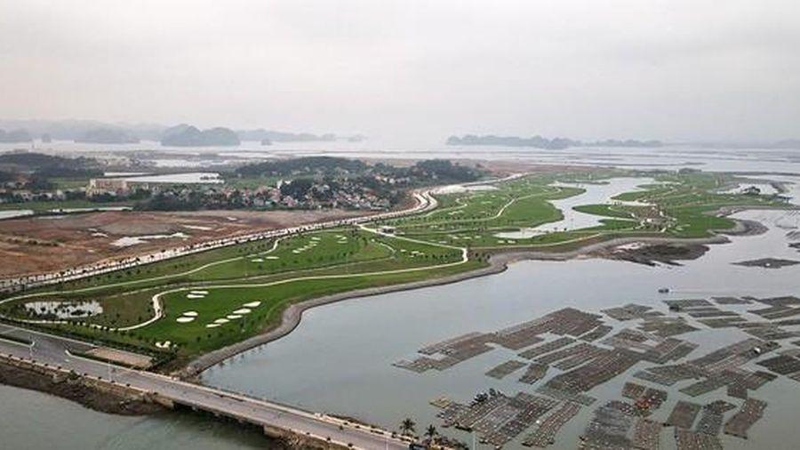 Sân Golf Tuần Châu ven biển tuyệt đẹp đánh được cả ngày lẫn đêm