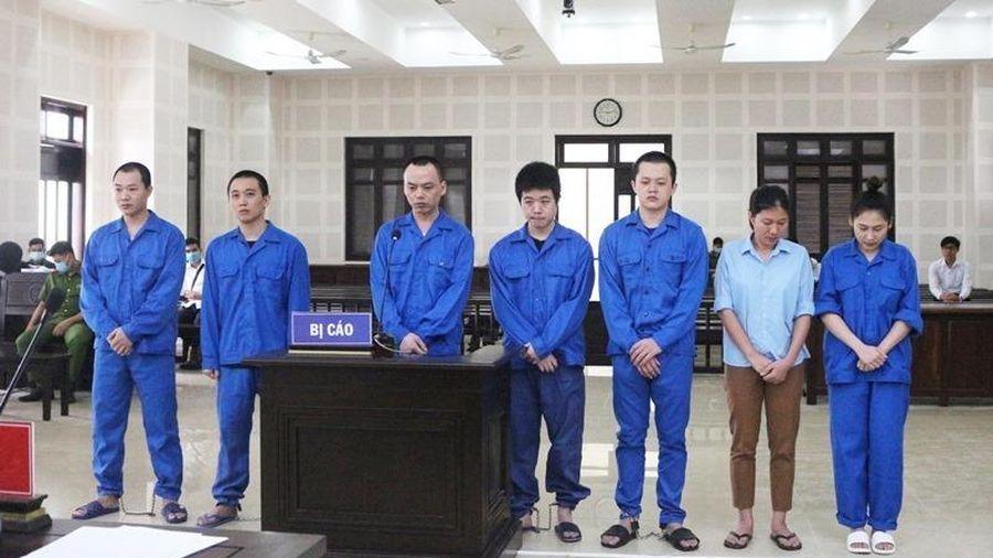 Tổ chức cho 14 người Trung Quốc nhập cảnh và ở 'chui', 7 bị cáo lĩnh án tù