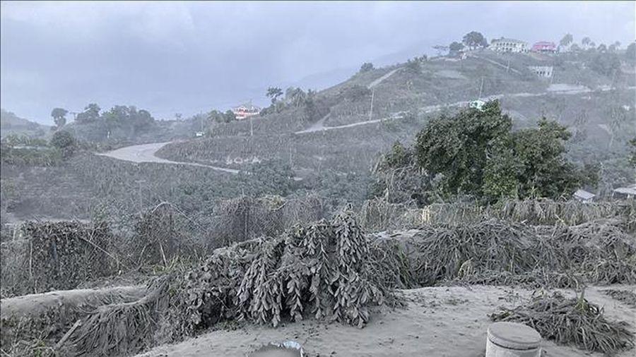 LHQ cảnh báo về ảnh hưởng từ hoạt động phun trào của núi lửa La Soufriere