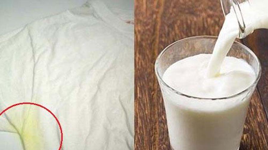 Tiện tay đổ cốc sữa vào chậu quần áo, ai cũng 'tròn mắt' khi thấy kết quả