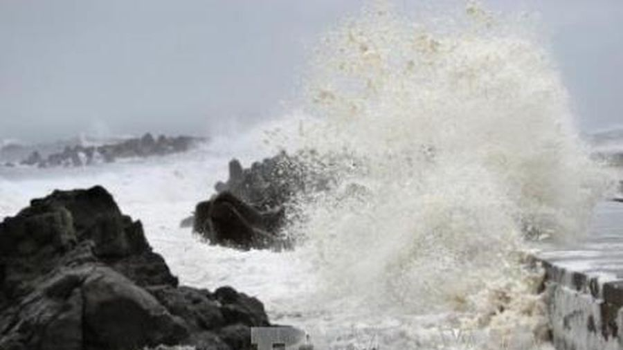 Năm nay sẽ có bao nhiêu cơn bão và áp thấp nhiệt đới?