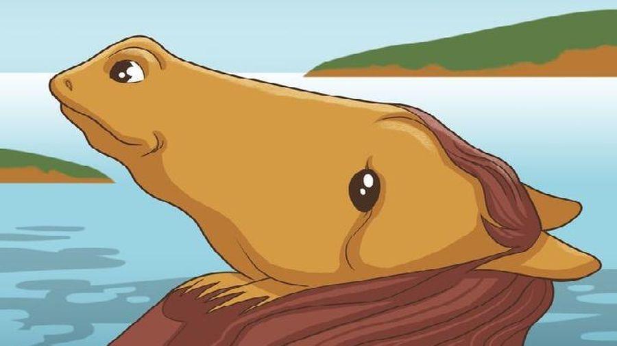 Trắc nghiệm vui đoán tính cách: Bạn nhìn thấy con ếch hay con ngựa?