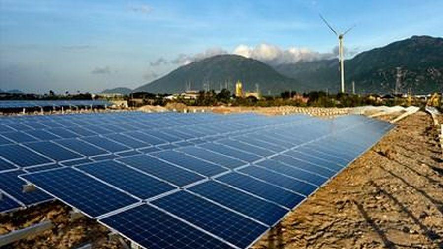 Khánh thành tổ hợp điện gió- điện mặt trời lớn nhất Việt Nam, vốn đầu tư 10.000 tỉ đồng