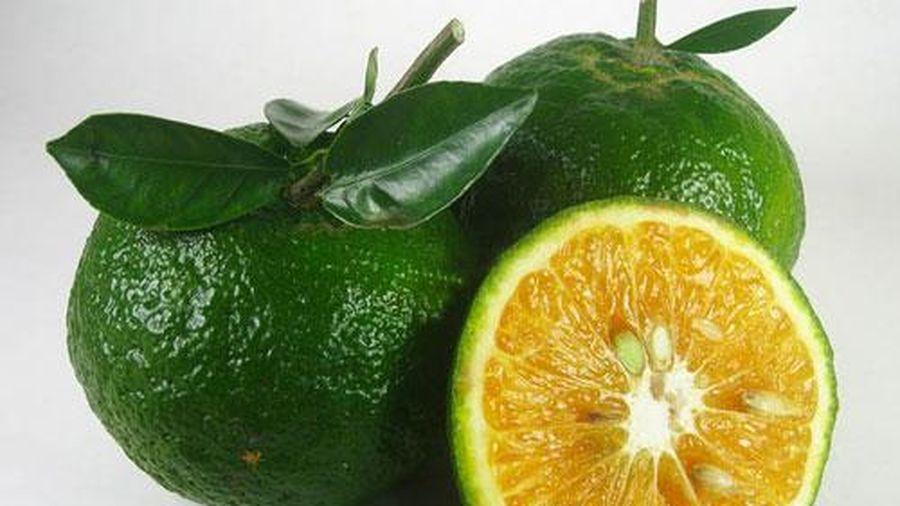 6 thực phẩm giúp bạn hạ nhiệt cơ thể
