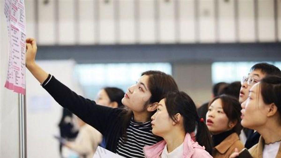 Trung Quốc: Tân cử nhân chi trăm triệu để tìm việc làm