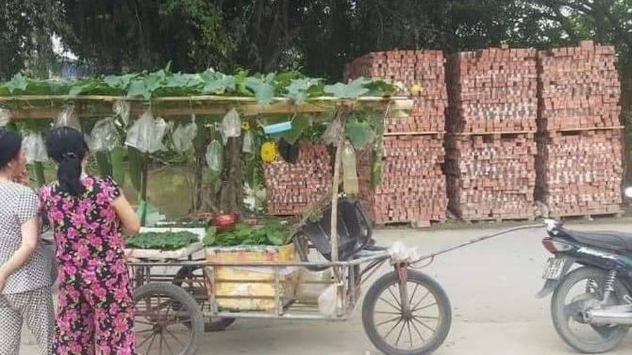 Hình ảnh khó tin người bán hạt giống chở cả dàn bí, thùng rau trên xe đẩy, dân mạng khen hết lời vì lý do này