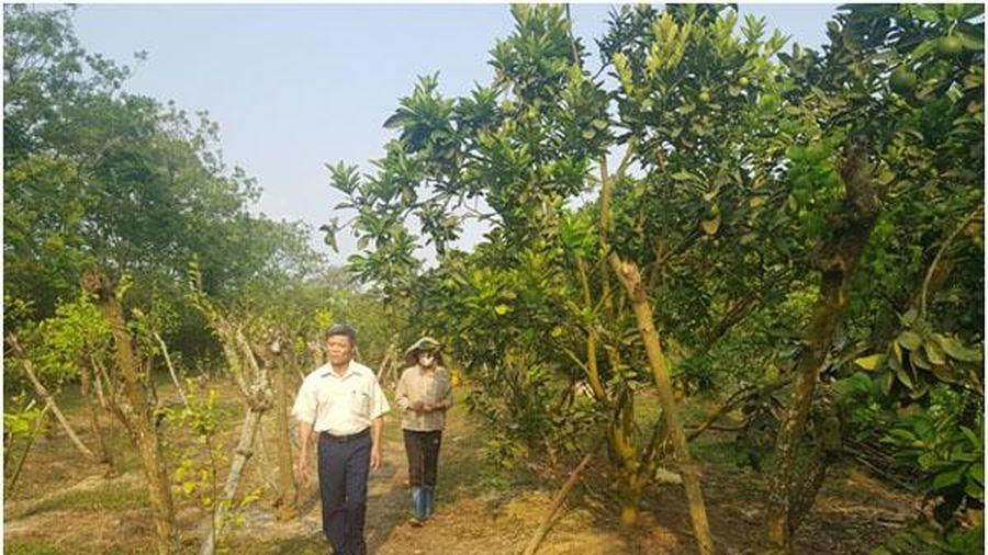 'Bảy tốt đời, ba đẹp đạo' trong đồng bào công giáo huyện Yên Định