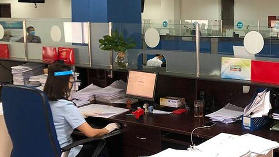 TP. Hồ Chí Minh: 3 doanh nghiệp được hoạt động đại lý hải quan
