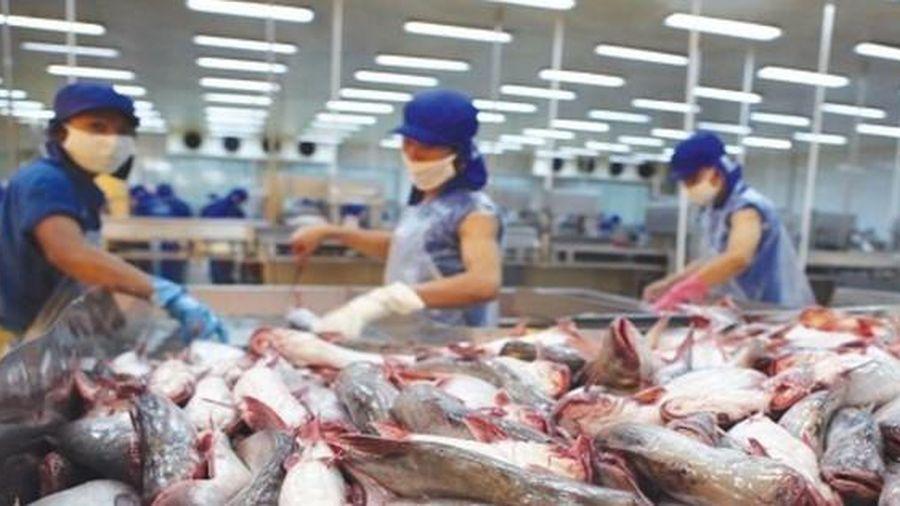 Sữa, thịt, thủy sản... sang EU sẽ khắt khe hơn