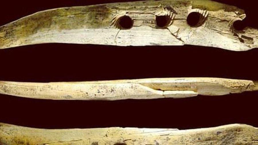 Bất ngờ với công cụ được chế tác từ ngà voi ma mút thời đồ đá