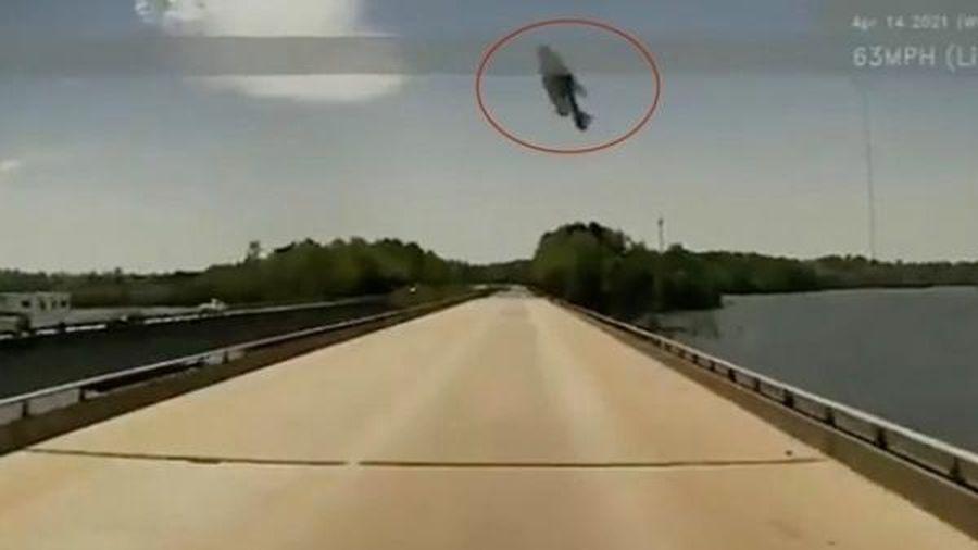 Đang lái xe, tài xế giật thót khi thấy 'cá bay' cực dị trên không trung