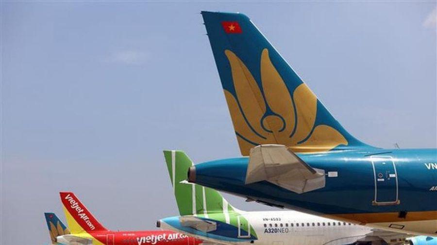 39 máy bay Việt Nam phải 'đắp chiếu' do dịch COVID-19