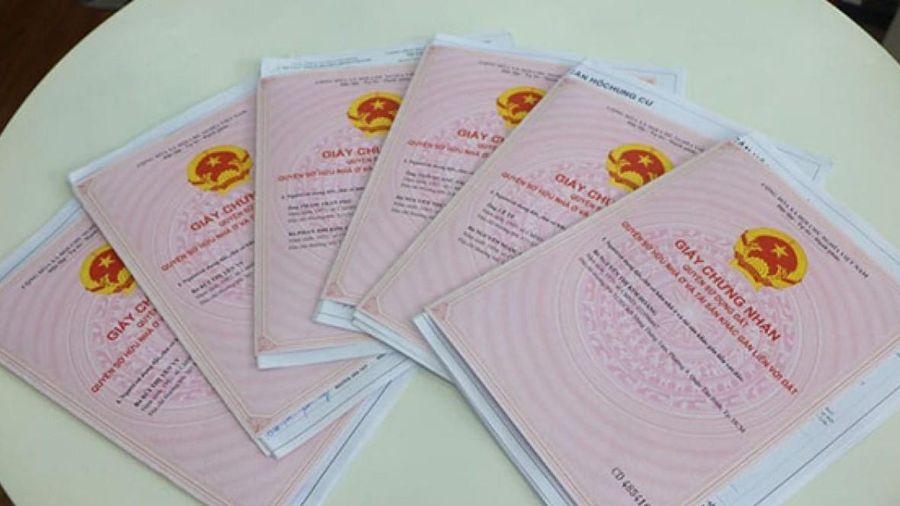 Bà Rịa - Vũng Tàu: Tạm dừng hồ sơ mua bán đất 'đồng sở hữu'