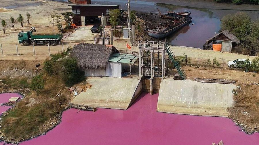 Nguyên nhân khiến nước đầm đổi màu hồng tím