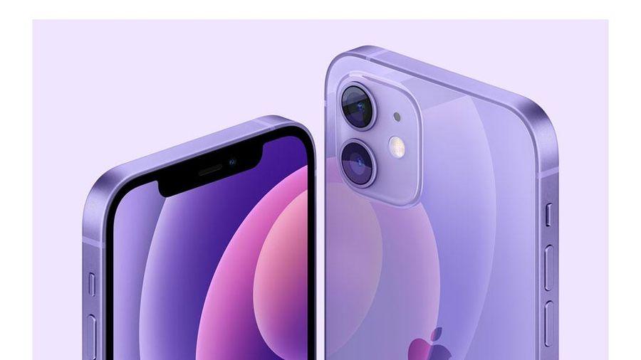 iPhone 12, iPhone 12 Mini có thêm màu tím, giá không đổi