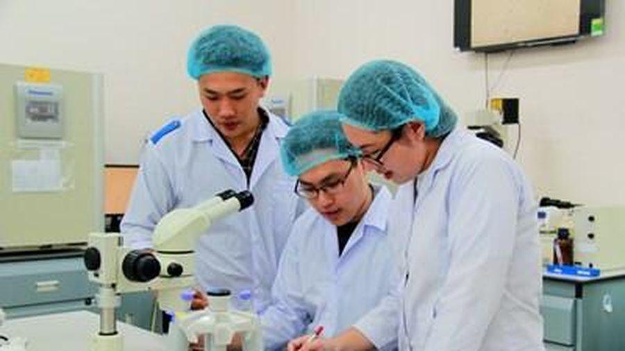 Đại học quốc gia Hồ Chí Minh: Định hướng trở thành Đại học nghiên cứu