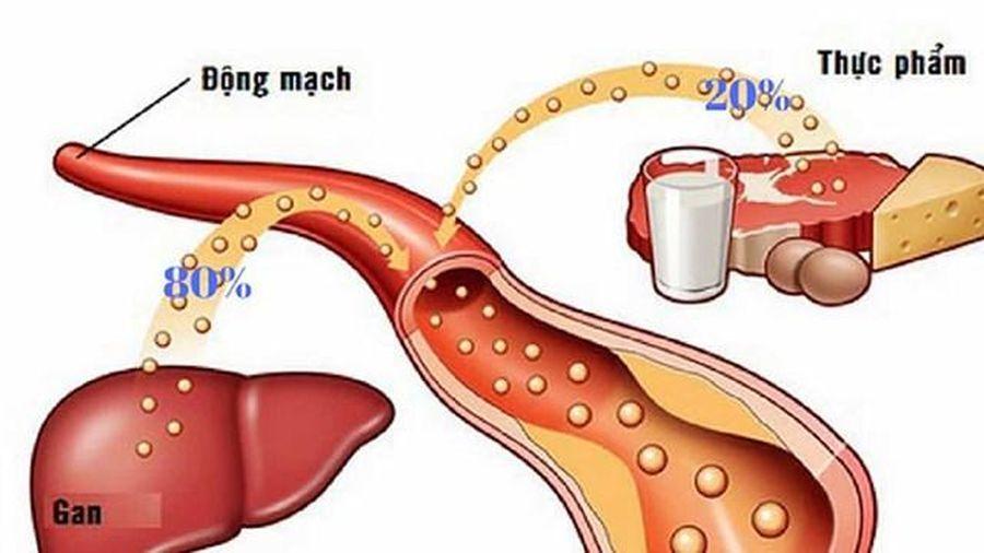 Những điều cần biết về cholesterol