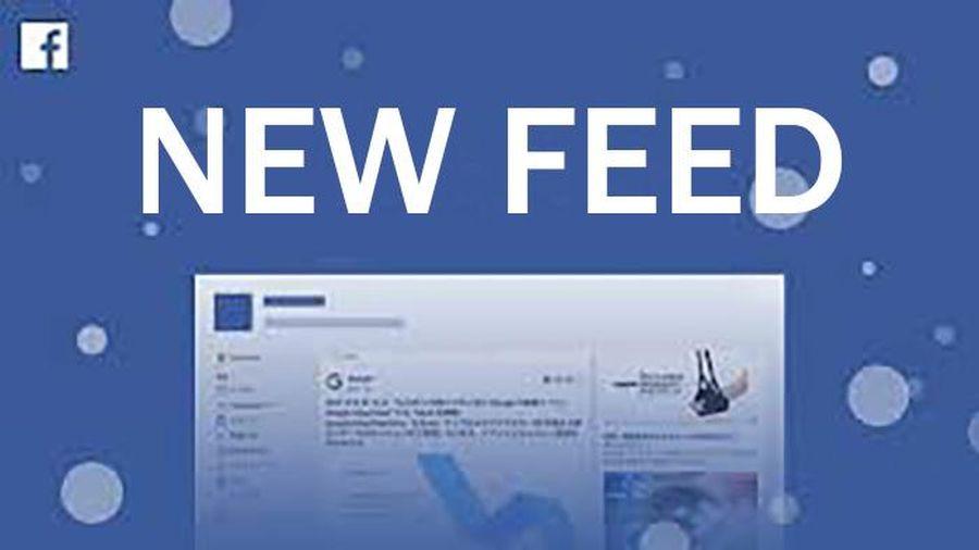 Facebook thay đổi thuật toán yêu cầu người dùng cung cấp phản hồi về bài đăng trên New Feed