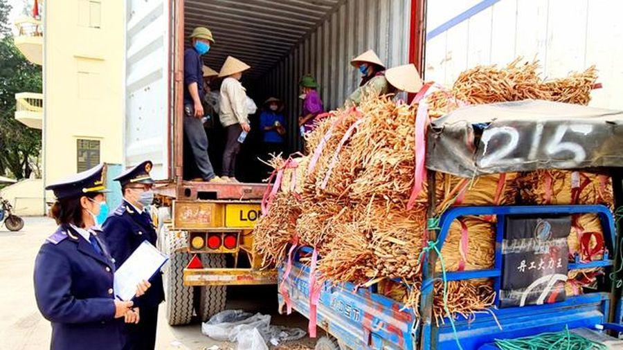 Hiệu quả từ cải cách thủ tục hành chính ở Hải quan Quảng Ninh