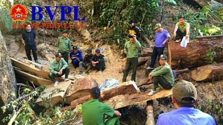 Thi hành kỷ luật hàng loạt cán bộ sai phạm ở Đắk Lắk