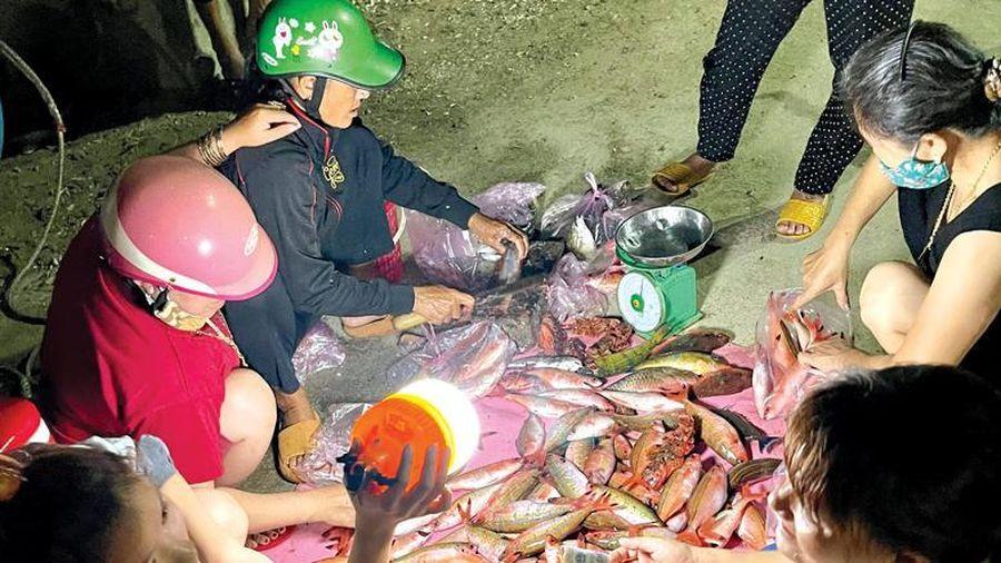 Khám phá chợ cá đêm ở Lý Sơn