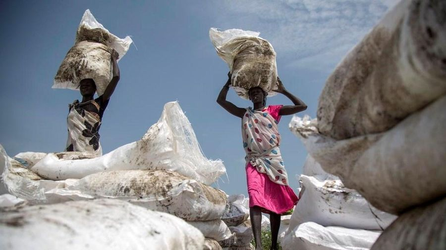 Các tổ chức quốc tế cảnh báo về khủng hoảng lương thực toàn cầu