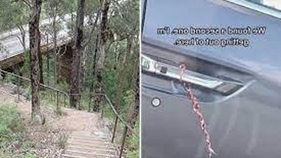 Thấy sợi dây buộc ở cửa xe, cô gái 'xanh mặt' khi nhận ra điều đáng sợ