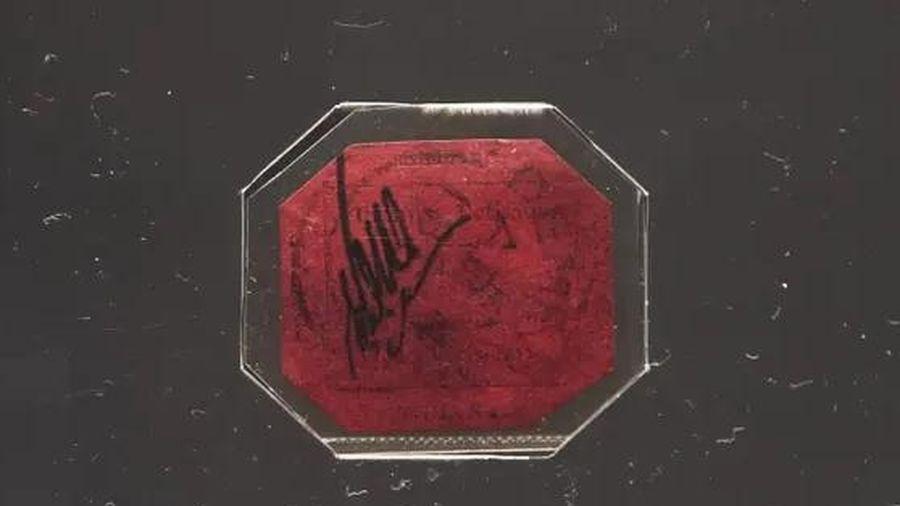 Con tem đắt nhất thế giới được định giá 15 triệu USD