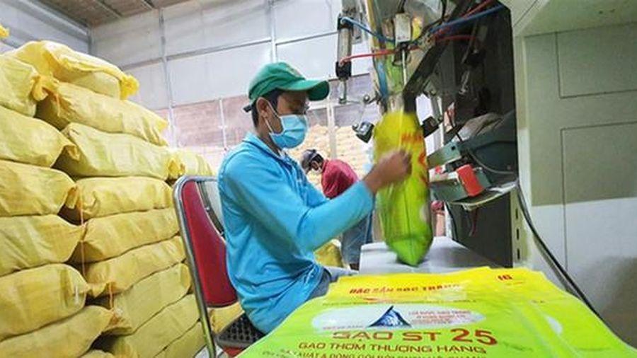Xuất khẩu gạo đang gặp khó