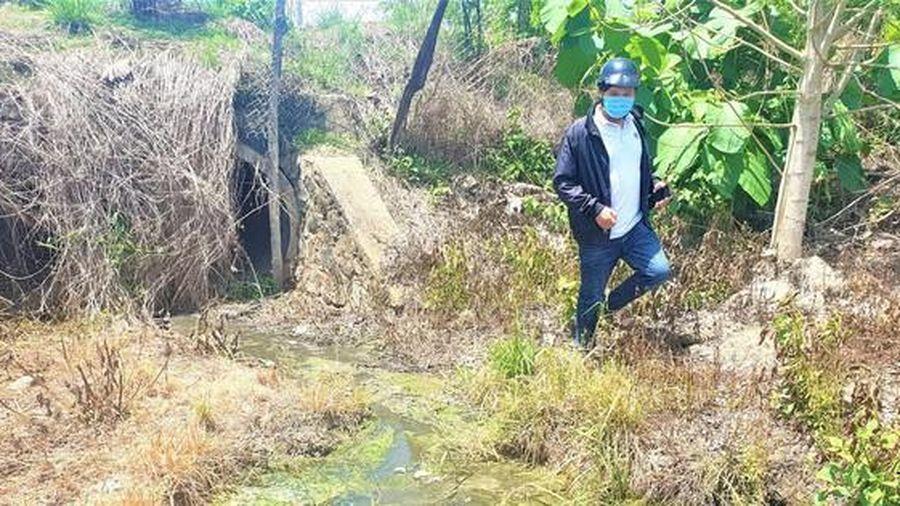 Dân ngạt thở vì 60 trại chăn nuôi trong thôn