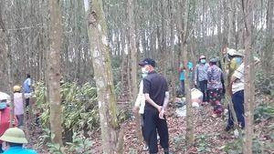 Phát hiện người đàn ông chết trong rừng keo sau 5 ngày mất tích