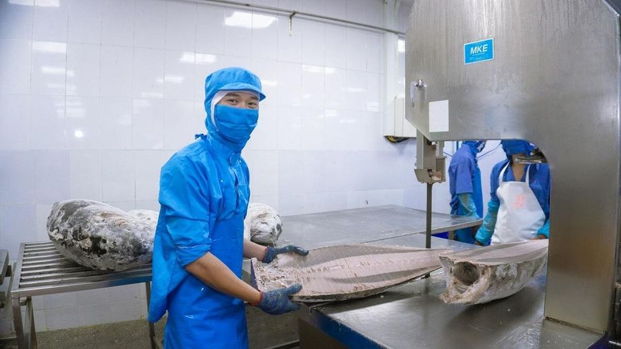 Kiểm tra tất các các DN ở Khu Kinh tế tỉnh Phú Yên có người nước ngoài làm việc