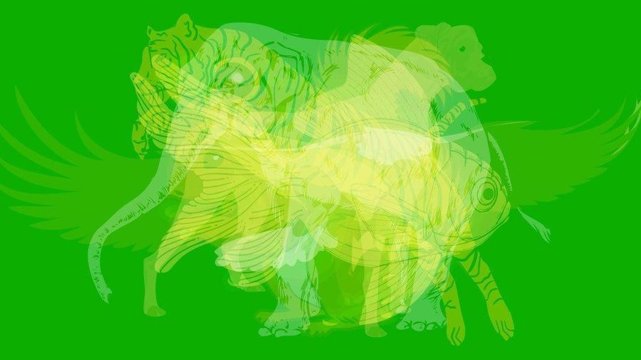Trắc nghiệm vui đoán tính cách: Con vật bạn nhìn thấy đầu tiên là gì?