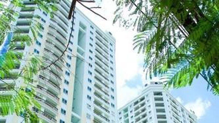TPHCM: Đề xuất thí điểm thu thuế cho thuê căn hộ
