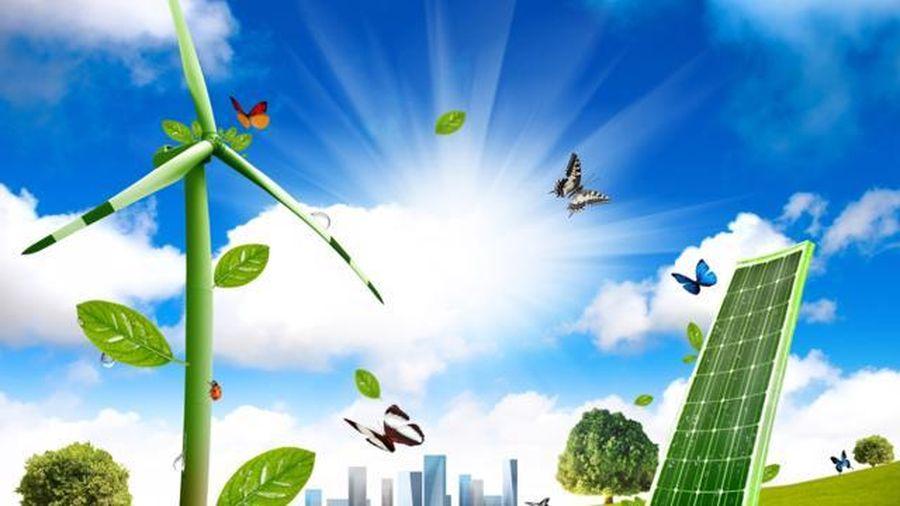 Chiến lược giai đoạn 2021-2030 hướng tới xanh hóa các ngành kinh tế; xanh hóa lối sống và thúc đẩy tiêu dùng bền vững