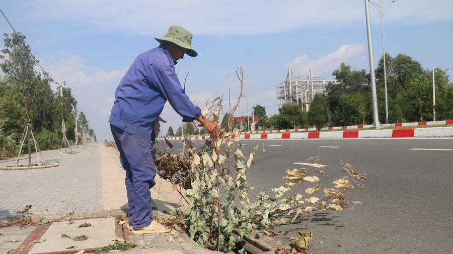 Tái diễn nạn trộm cắp nắp cống ở các tuyến đường